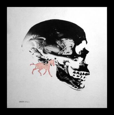 Joseph Grazi, 'Zebra Skull'