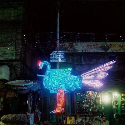 Denis Dailleux, 'L'oiseau á Calcutta', 2019