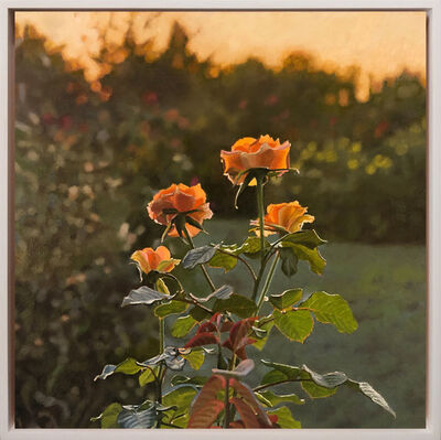 Jeffrey Vaughn, 'Roses at Sunset', 2020