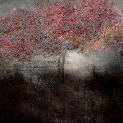 Saskia Boelsums, 'Landscape #109', 2019