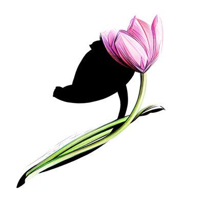 Fantini Laura, 'Sketch #56 - Tulip', 2017