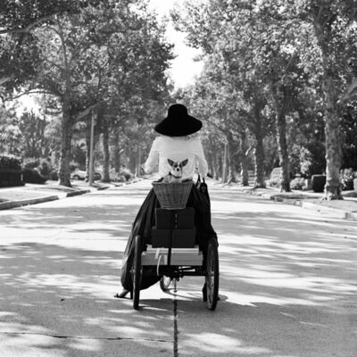 Rodney Smith, 'Woman on Bicycle with Dog in Basket, Beverly Hills, CA', 1998