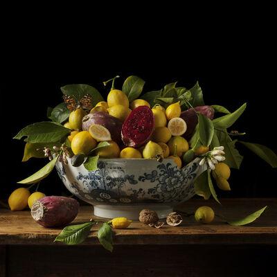 Paulette Tavormina, 'Lemons and Prickly Pears', 2013
