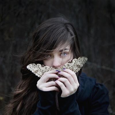 Cig Harvey, 'White Witch Moth, Devin, Rockport, Maine'