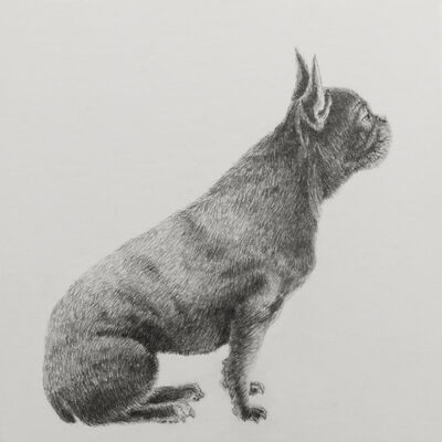 "Carlos Alarcón, '""French Bulldog"" from the series ""Paradoxes""', 2018"