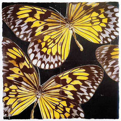Donald Sultan, 'Butterflies, January 24', 2006