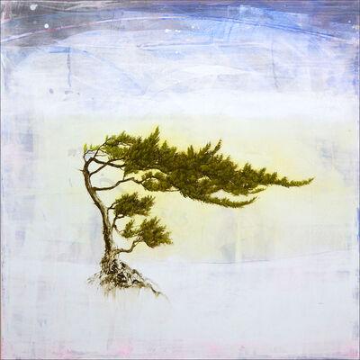 Robert Marchessault, 'Juniperus', 2021