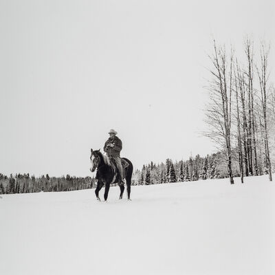 Scott T. Baxter, 'Coming out of 24 Draw, Slade Ranch, Apache County', 1999