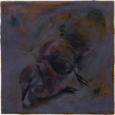 Noel Grunwaldt, 'Dove', 2016-2017