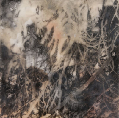 Robin Cole, 'Ghost I', 2014