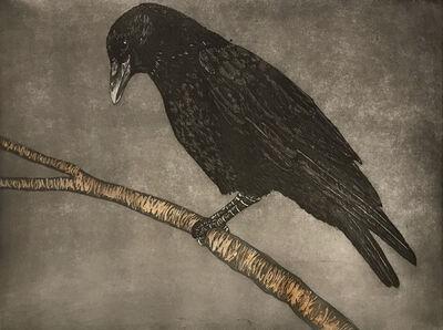Julia Lucey, 'Crow', 2018