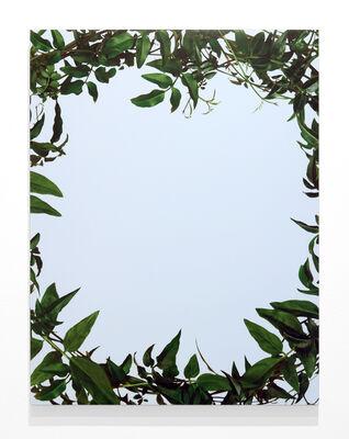 Sarah Charlesworth, 'Leaf Frame from the series Neverland', 2002