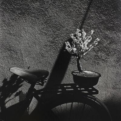 Issei Suda, 'Minowa', 1977