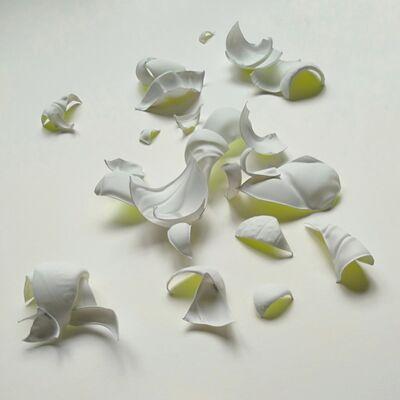 Cristina Almodóvar, 'Shells', 2019