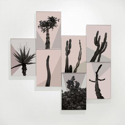 Claudia Jaguaribe, 'Os Sexos', 2015