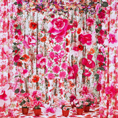 Patty Carroll, 'Rosy', 2014
