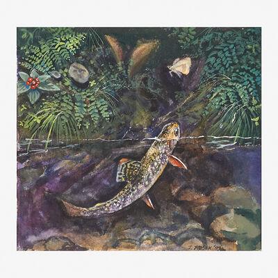James Prosek, 'Small Brookie Chasing Moth', 1999