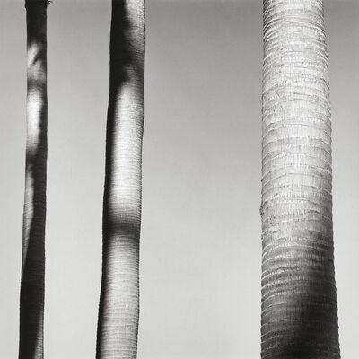Alan Ostreicher, 'Untitled 507-12', 2001