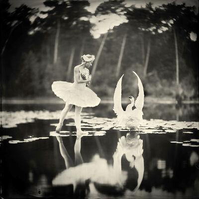 Alex Timmermans, 'Swan Lake'