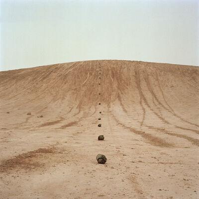 Gidon Levin, 'Hila', 2012