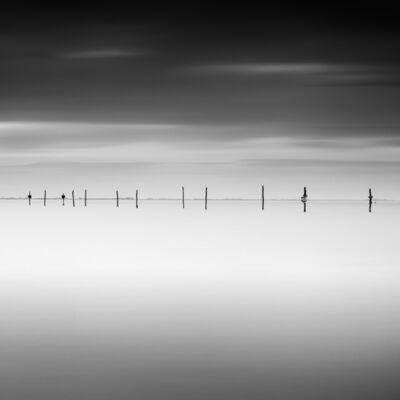 Frank Peters, 'Poles, Oesterdam ', 2019