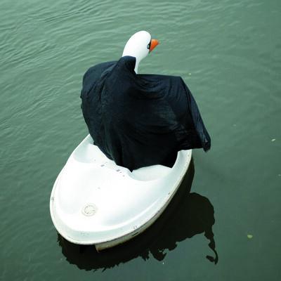 Parastou Forouhar, 'Swanrider III', 2004