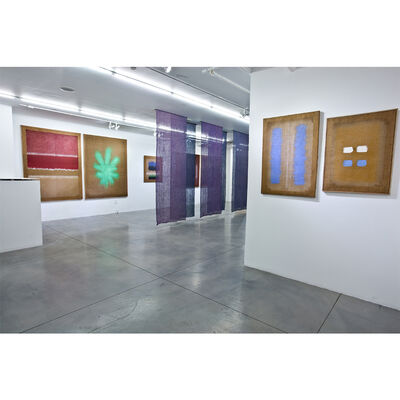 Transparency, installation view