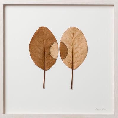 Susanna Bauer, 'Trans-Plant No. 20', 2017