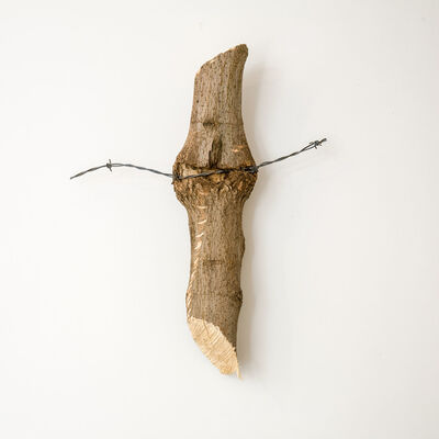 Charles Harlan, 'Tree', 2014