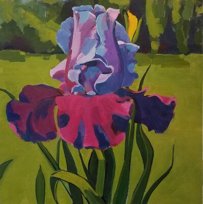 Jenn Hallgren, 'Large Iris', 2017