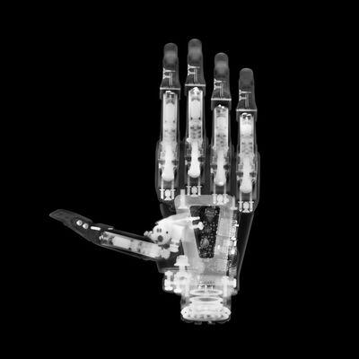David Arky, 'Robotic Hand', 2019