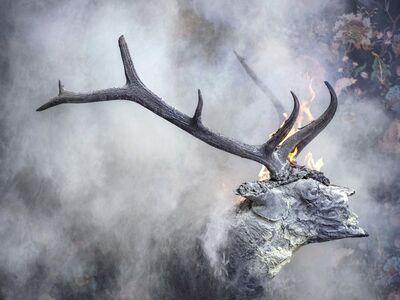 Christian Houge, 'Elk - Burnt', 2018