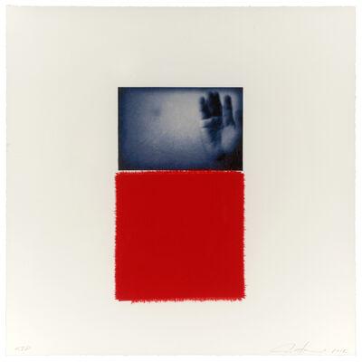 Ann Hamilton, 'Blue Victory', 2012