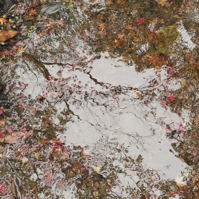 Ori Gersht, 'Floating World - Melting World 02 ', 2016