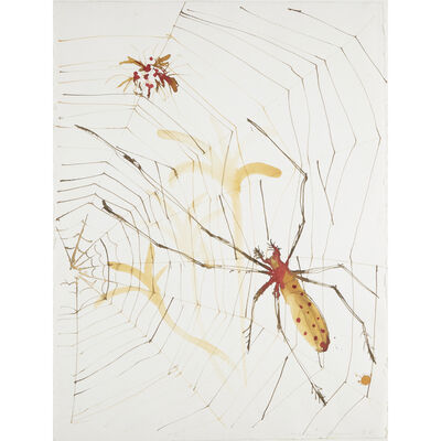Alexis Rockman, 'Untitled (Spider And Its Web)'