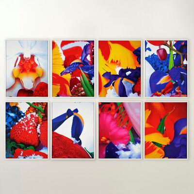 Marc Quinn, 'Portraits of Landscapes (Portfolio of 8)', 2007