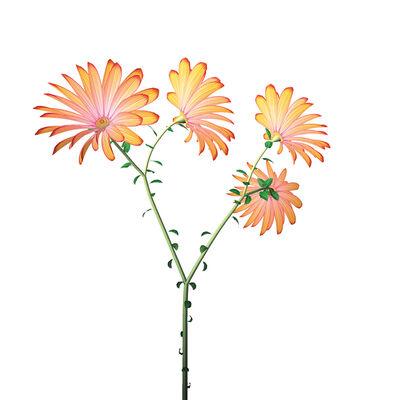 Jennifer Steinkamp, 'Dance Hall Girl #3 (daisies)', 2004