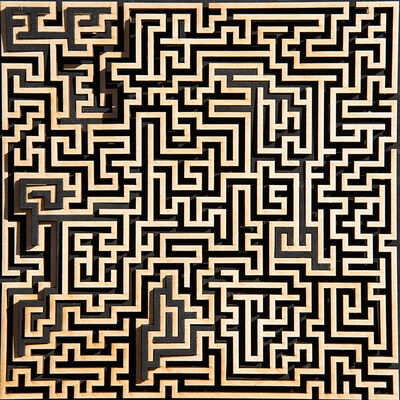 Jared Tarbell, 'BLACK PATH MAZE', 2019