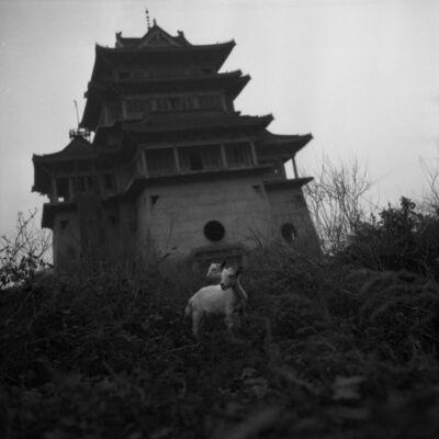Tian Ye, 'Wandering Slowly 14 [慢慢的游走 14]', 2002-2005