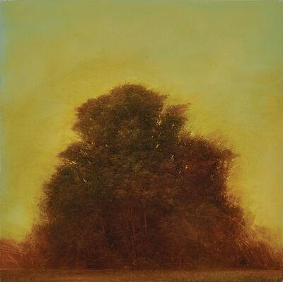 Robert Marchessault, 'The Krull Flats', 2008