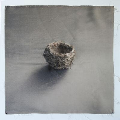 Kate Breakey, 'Nest 35', 2010-2019