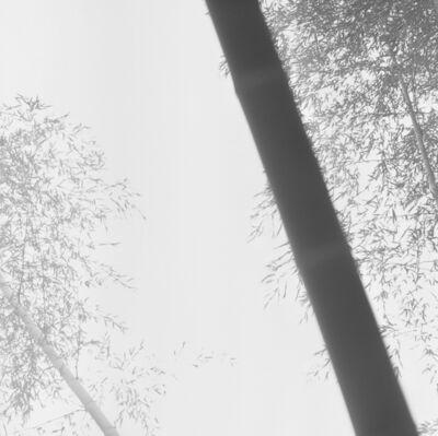 Choi Byung-Kwan, 'Bamboo Grey #1', 2017
