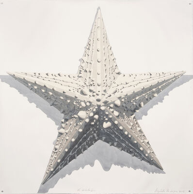 Dagoberto Rodríguez, 'No Estrella Gris', 2019