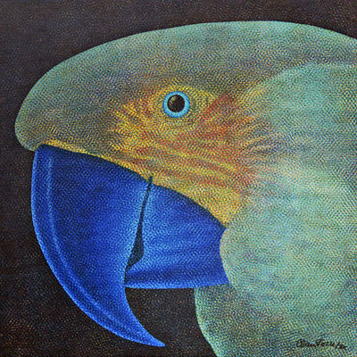 Claudio Tozzi, 'Papagaio', 1980