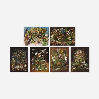 Isabella Kirkland, 'Taxa (portfolio)', 2007