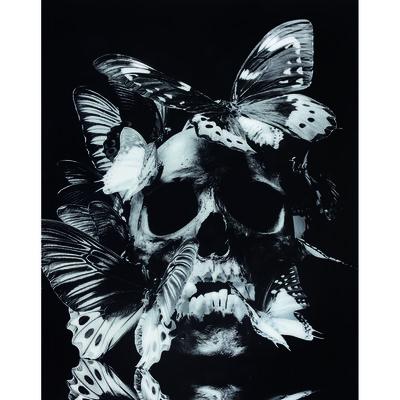 Philippe Pasqua, 'Vanité aux papillons', 2008