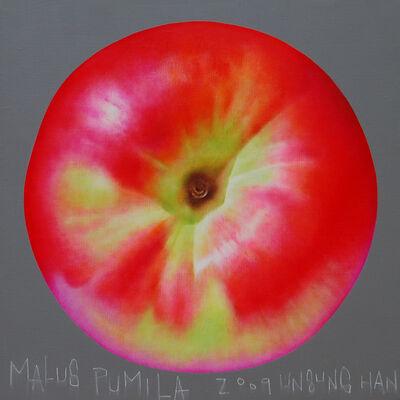 Han Unsung, 'Malus Pumila', 2009