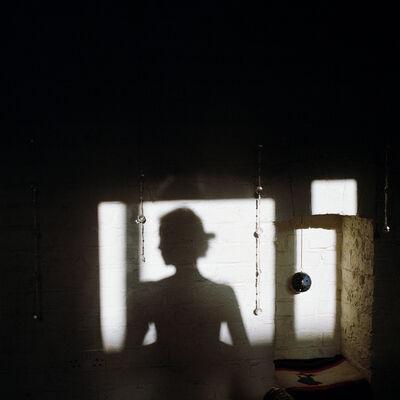 Lydia Goldblatt, 'Narcissus #2', 2010-2013