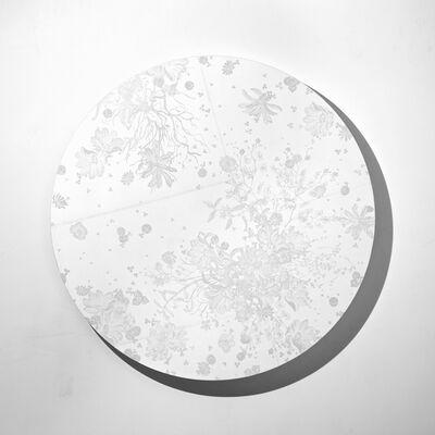Shinji Ohmaki, 'Echoes Crystallization', 2013