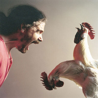 Koen Vanmechelen, 'The Chicken's Appeal', 2003
